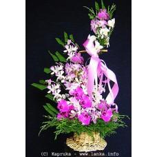 Enchanting Purple Orchids Basket