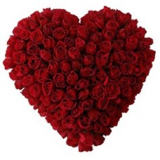 Classic heart shape rose for special one